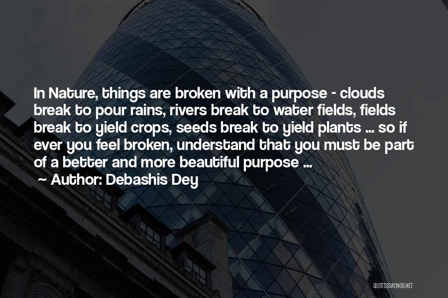 Pour Your Heart Into It Quotes By Debashis Dey