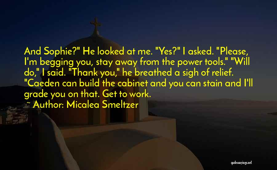 Power Tools Quotes By Micalea Smeltzer