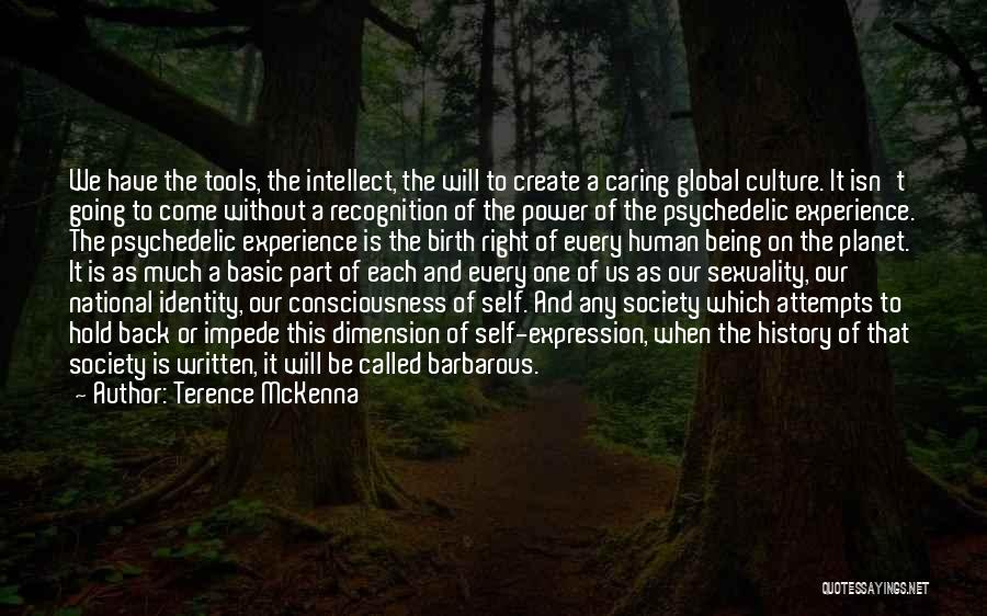 Power Tools Quotes By Terence McKenna