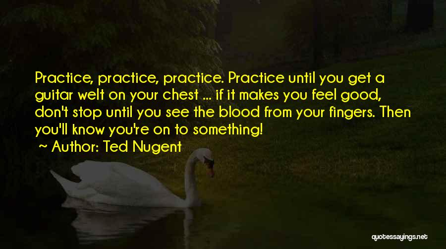 Practice Guitar Quotes By Ted Nugent