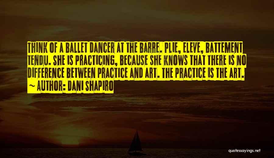 Practicing Art Quotes By Dani Shapiro