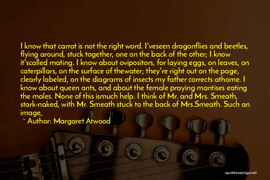Praying Together Quotes By Margaret Atwood