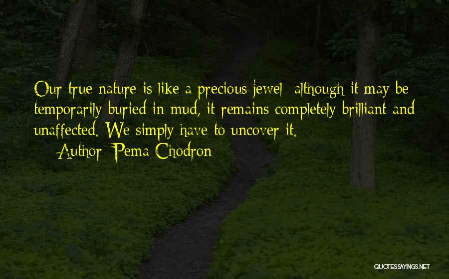 Precious Jewels Quotes By Pema Chodron