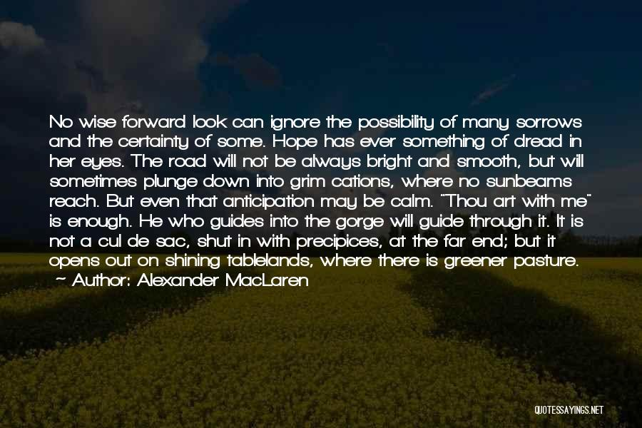 Precipices Quotes By Alexander MacLaren