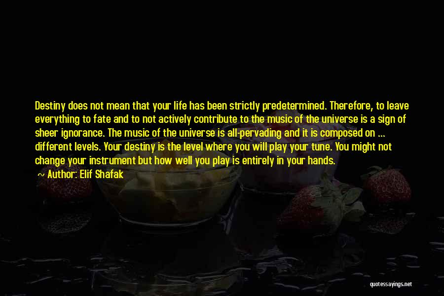 Predetermined Fate Quotes By Elif Shafak