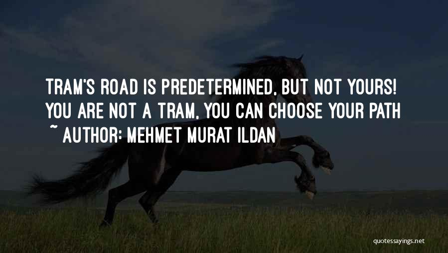 Predetermined Fate Quotes By Mehmet Murat Ildan