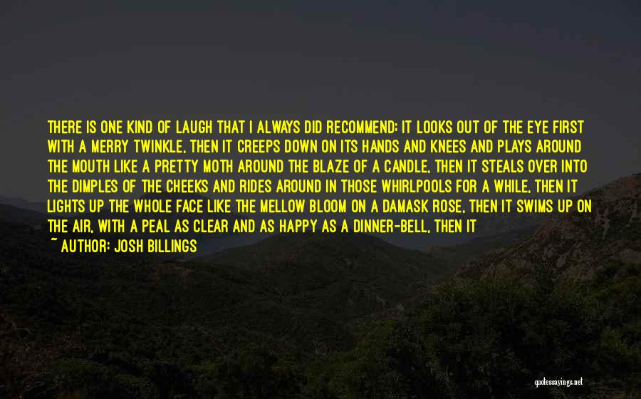 Pretty Lights Quotes By Josh Billings