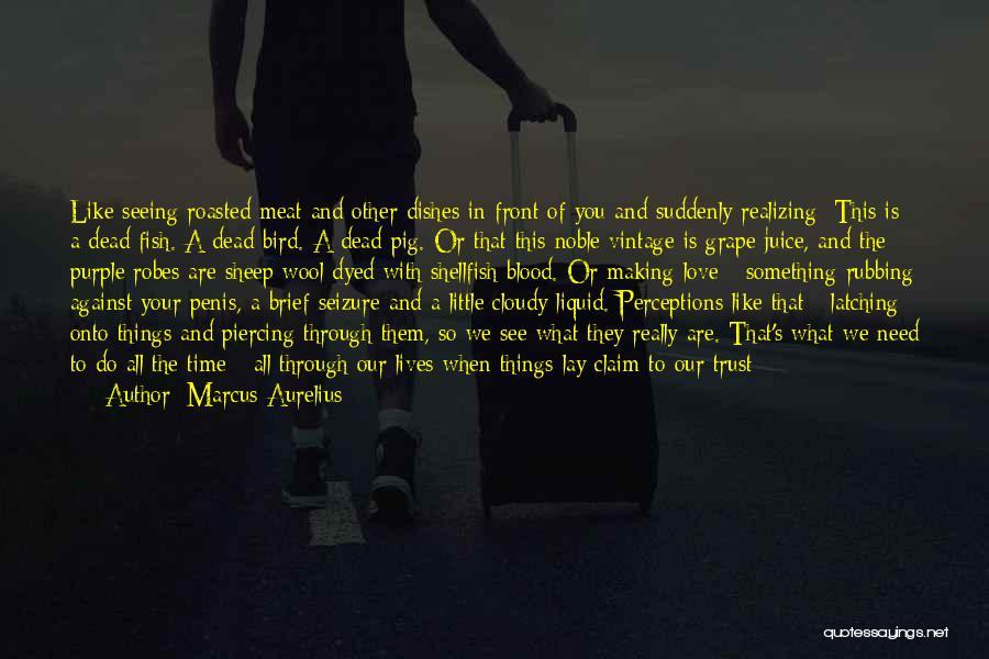 Pride Of Love Quotes By Marcus Aurelius