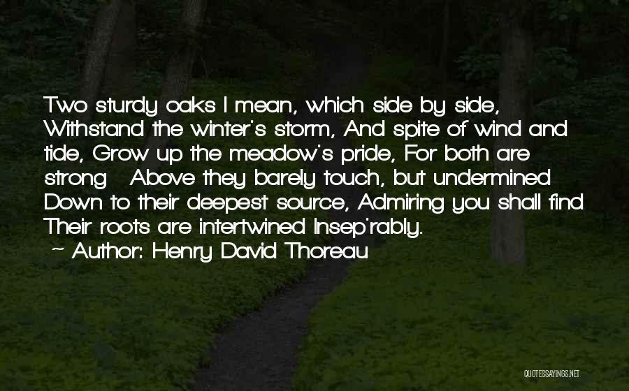 Pride To The Side Quotes By Henry David Thoreau