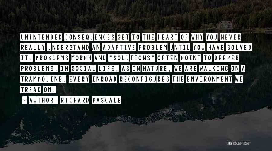 Problems Have Solutions Quotes By Richard Pascale
