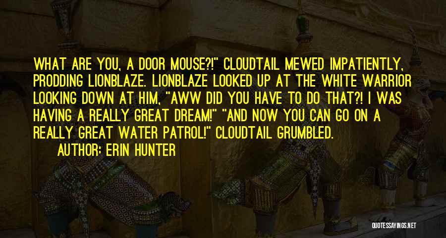 Prodding Quotes By Erin Hunter