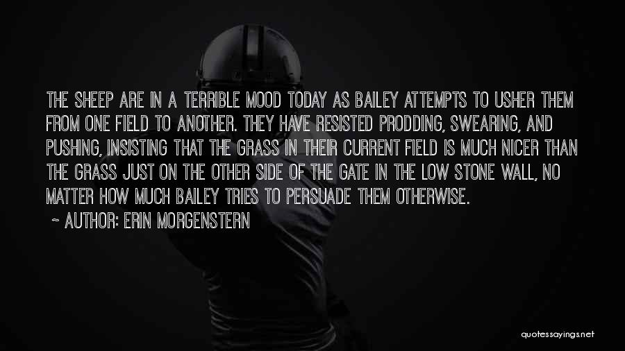 Prodding Quotes By Erin Morgenstern