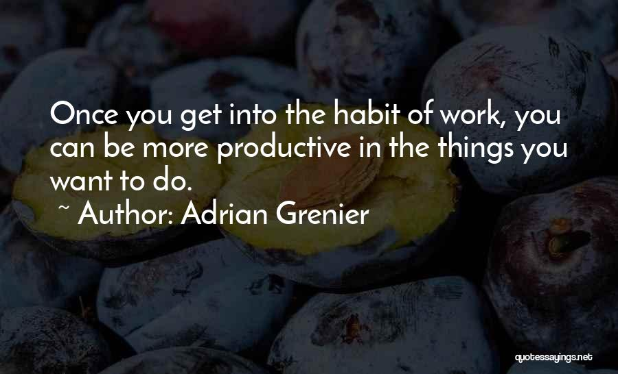 Productive Work Quotes By Adrian Grenier