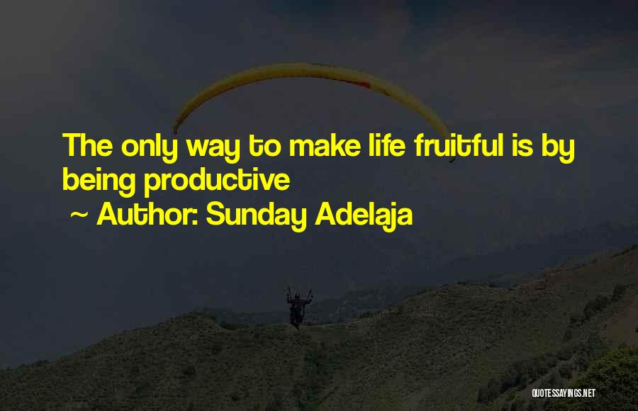 Productive Work Quotes By Sunday Adelaja