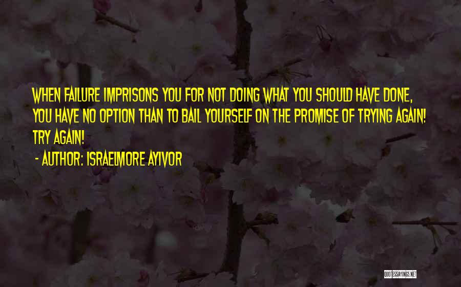 Promise To You Quotes By Israelmore Ayivor