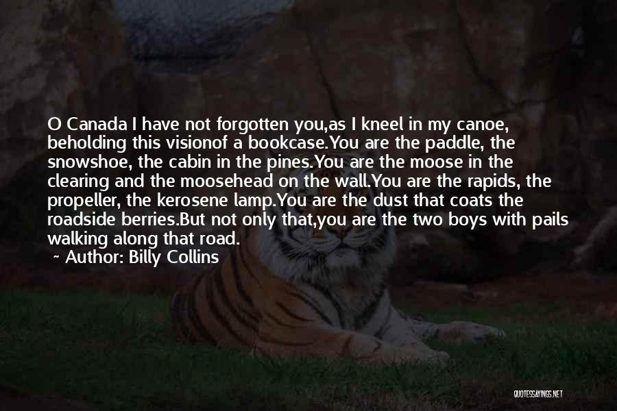 Propeller Quotes By Billy Collins