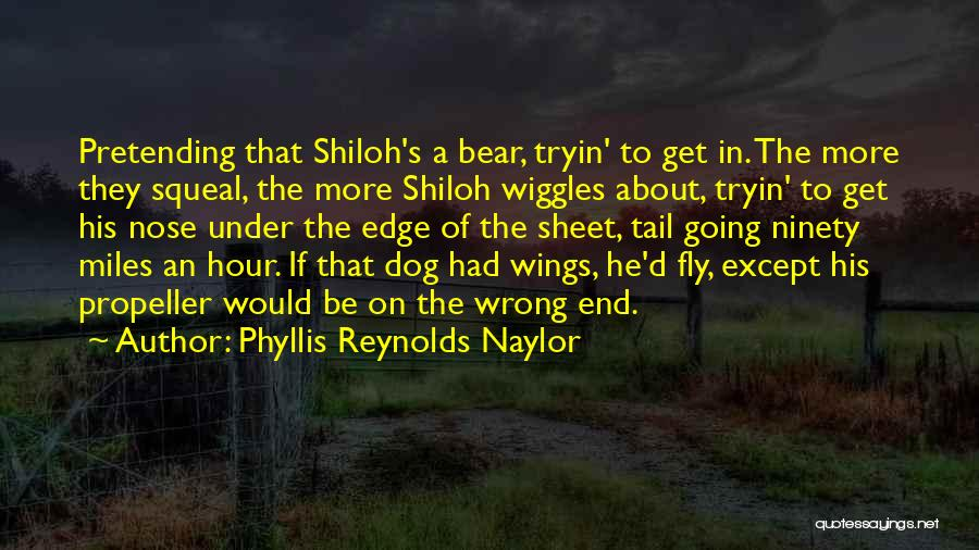 Propeller Quotes By Phyllis Reynolds Naylor