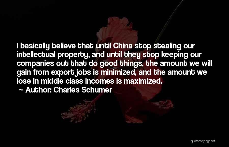 Property Quotes By Charles Schumer