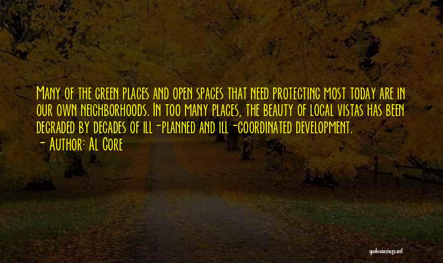 Protecting Each Other Quotes By Al Gore