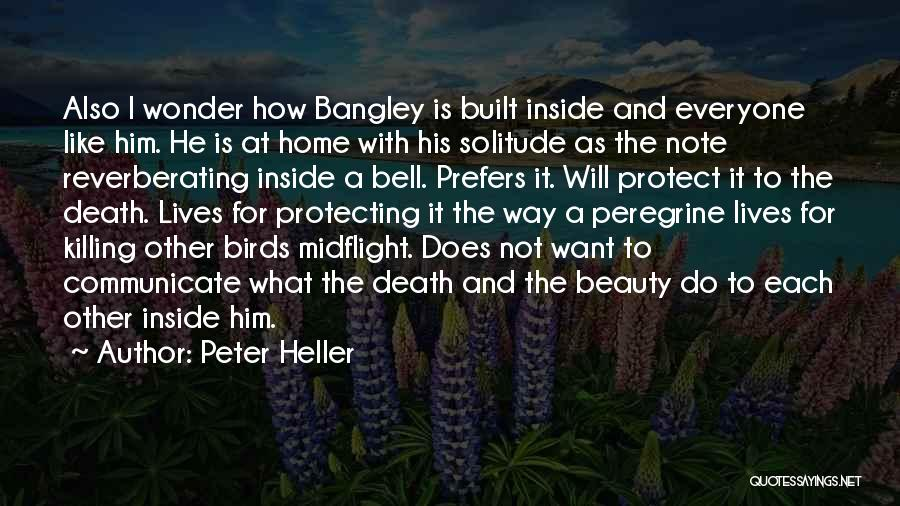 Protecting Each Other Quotes By Peter Heller