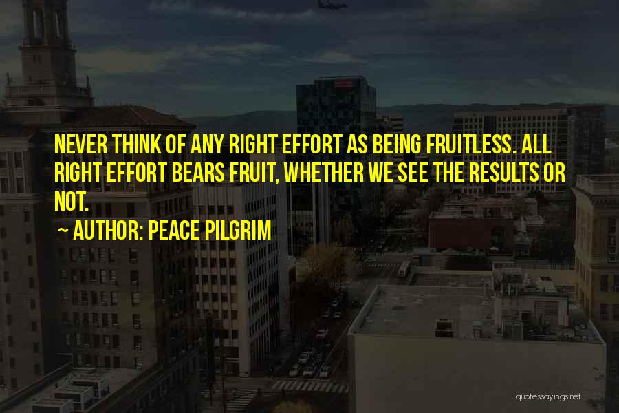 Prudence Cummings Wright Quotes By Peace Pilgrim