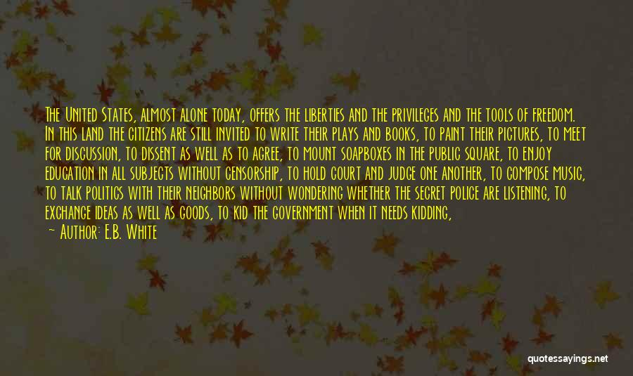 Public Education In America Quotes By E.B. White