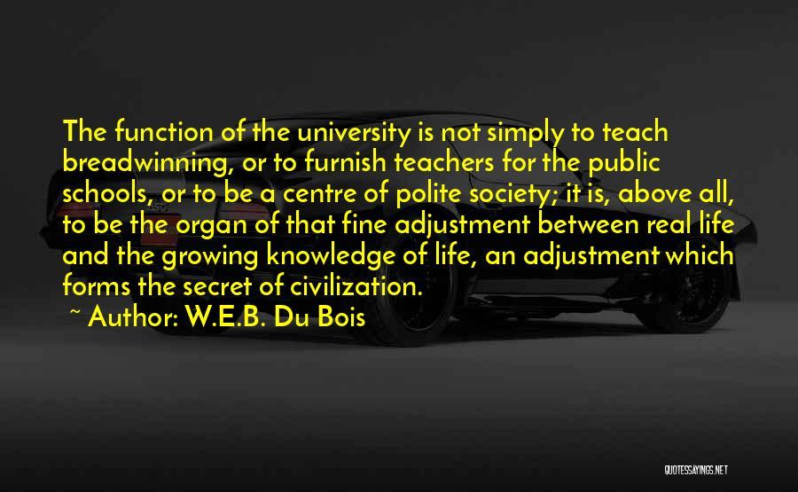 Public Education In America Quotes By W.E.B. Du Bois