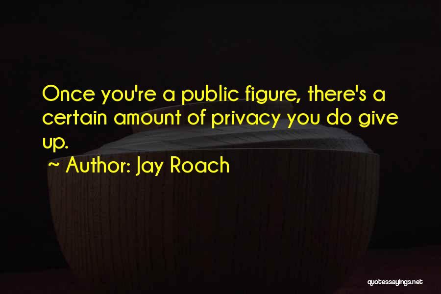 Public Figure Quotes By Jay Roach