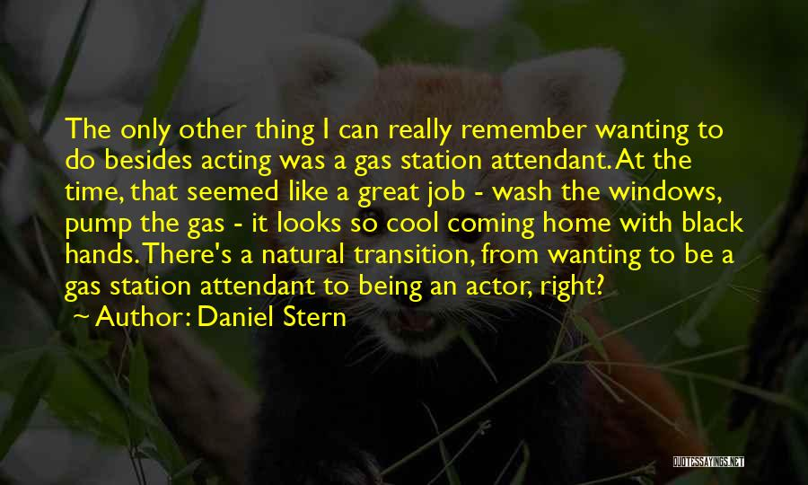 Pump It Quotes By Daniel Stern