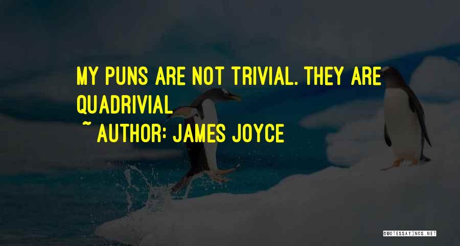 Pun Quotes By James Joyce