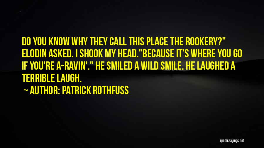Pun Quotes By Patrick Rothfuss