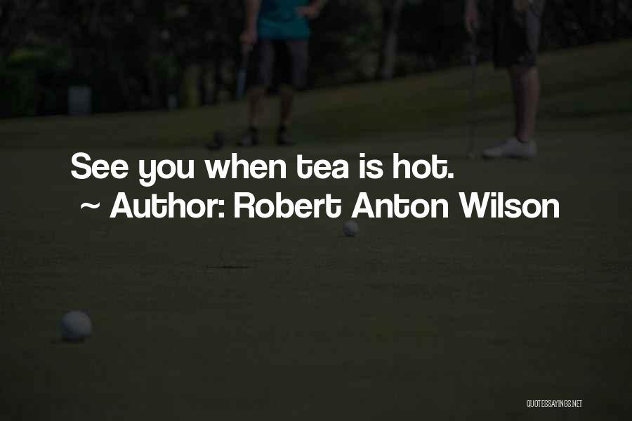 Pun Quotes By Robert Anton Wilson
