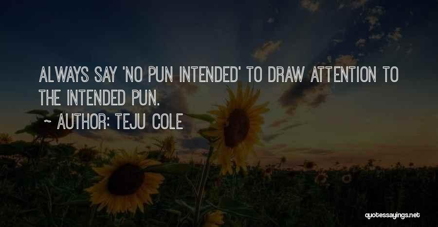 Pun Quotes By Teju Cole