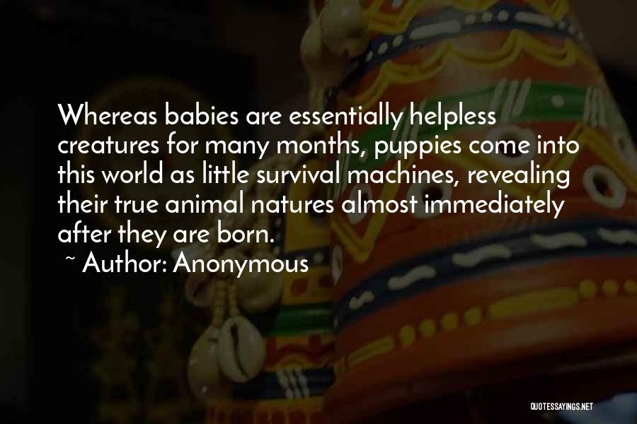 Puppies Quotes By Anonymous