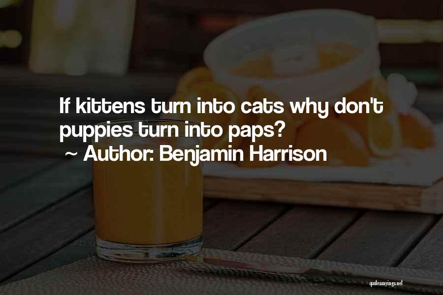 Puppies Quotes By Benjamin Harrison
