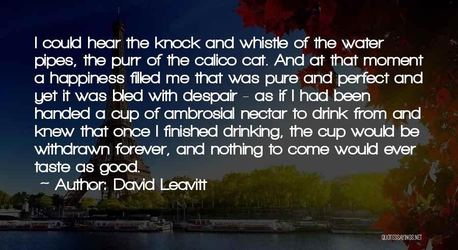 Pure Drinking Water Quotes By David Leavitt