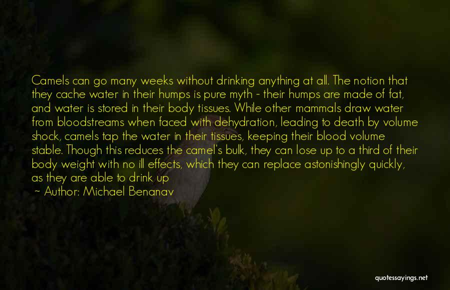 Pure Drinking Water Quotes By Michael Benanav