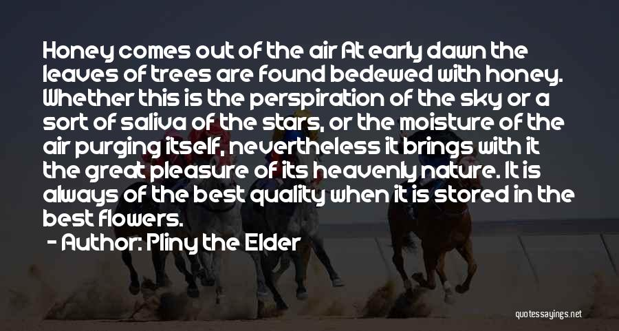 Purging The Past Quotes By Pliny The Elder