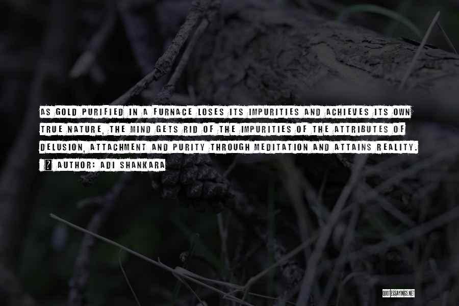 Purified Quotes By Adi Shankara