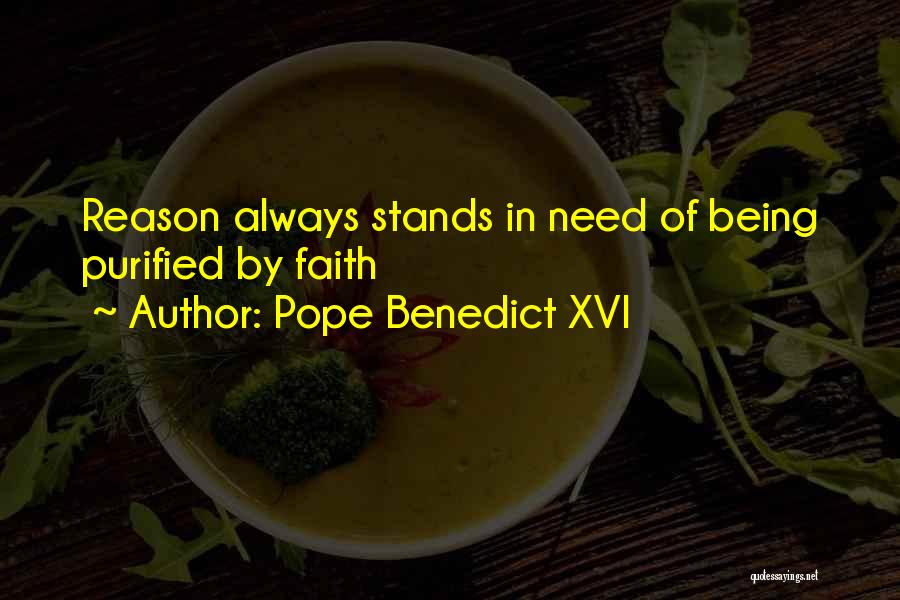 Purified Quotes By Pope Benedict XVI