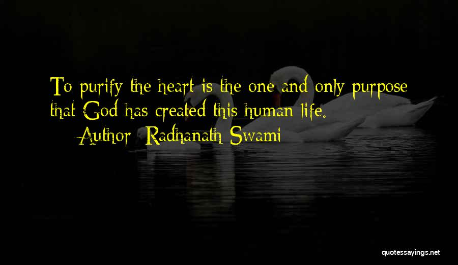 Purify My Heart Quotes By Radhanath Swami