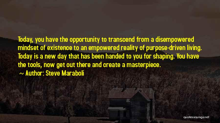 Purpose Driven Quotes By Steve Maraboli