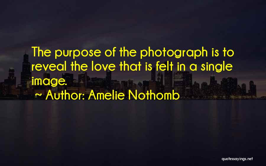 Purpose Of Love Quotes By Amelie Nothomb