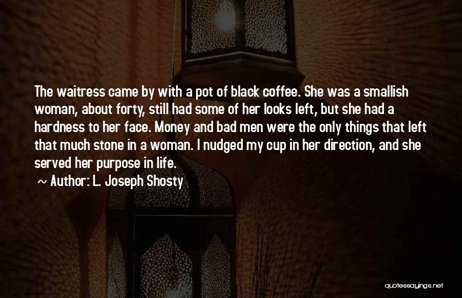 Purpose To Life Quotes By L. Joseph Shosty