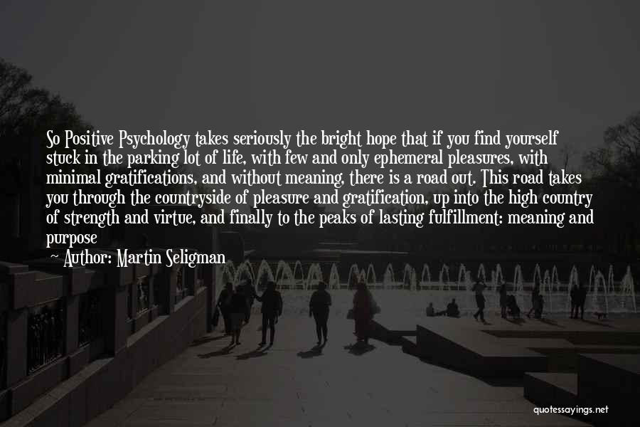 Purpose To Life Quotes By Martin Seligman
