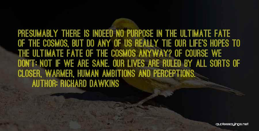 Purpose To Life Quotes By Richard Dawkins