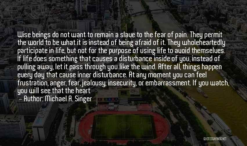 Push Through The Pain Quotes By Michael A. Singer