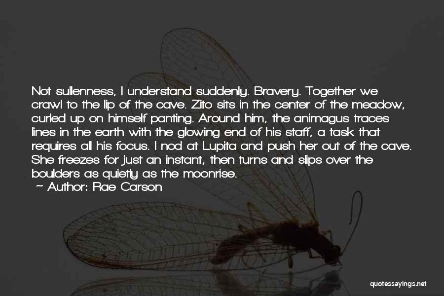 Push Till The End Quotes By Rae Carson