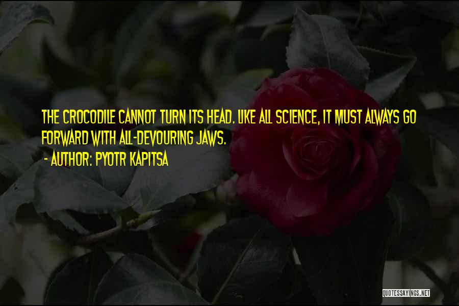 Pyotr Kapitsa Quotes 1818256