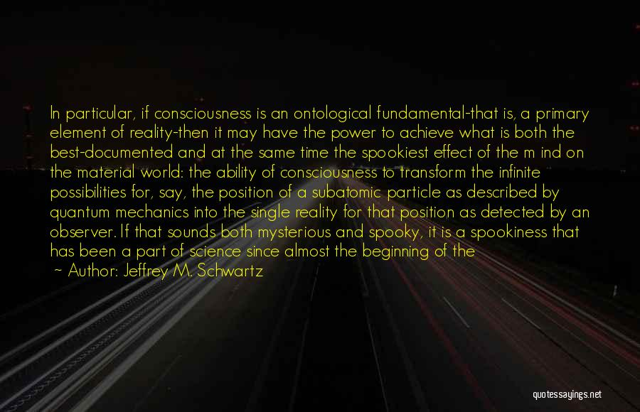 Quantum Quotes By Jeffrey M. Schwartz